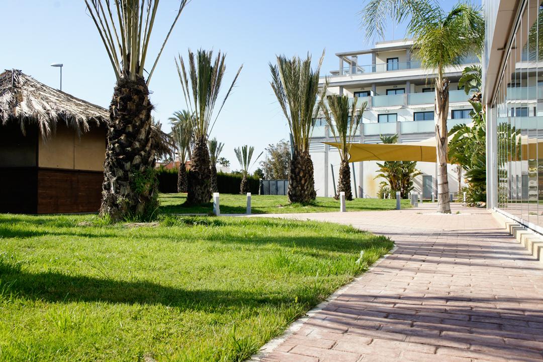 Hotel en la playa de oliva apartotel en la playa en for Jardin de invierno loi suites